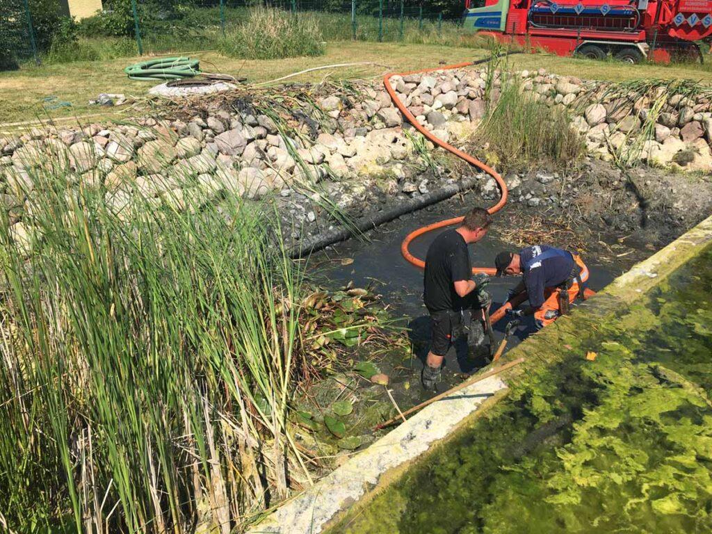 Det hydrobotaniske-plantebed oprenses med slamsuger